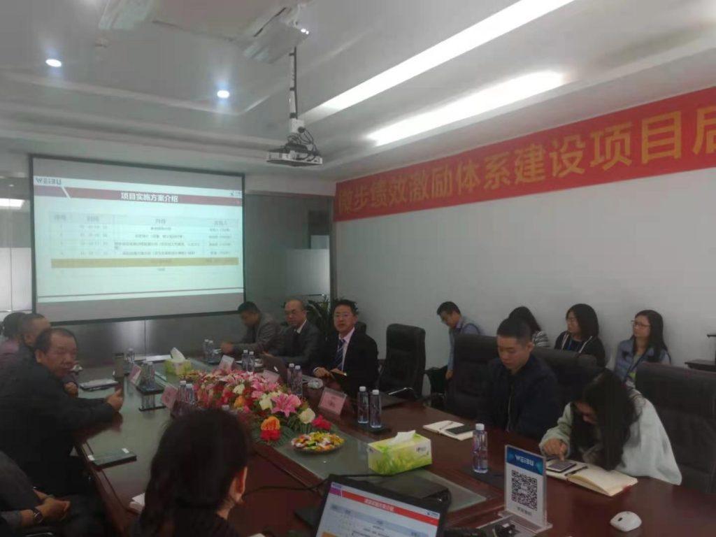 深圳微步信息股份有限公司绩效管理咨询与激励体系建设